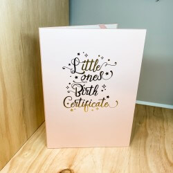 Birth Certificate Pink A4 Holder