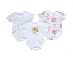 Short Sleeve Baby Bodysuit 3 pack - Bouquet